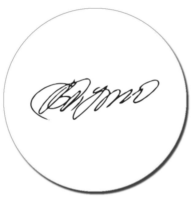 Подпись Путин